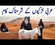 Wasaib Info tv