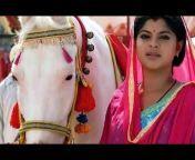 World Horse Lover