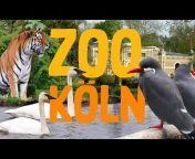 Zoo-Erlebnis
