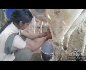 Rajasthani vlogger Narender Rawat
