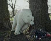 Kutup ayıları dünya liderlerinin umurunda değil. Ama sen tüm bunlara dur diyebilirsin. Hemen şimdi bu büyük harekete katıl. Kuzey Kutbu'nu kurtar. http://savethearctic.org/tr/