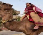 Indian Woman Rides aCamel