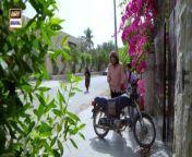 Mujhay Vida Kar is the story of two girls who are friends and have different aspirations in life. Rida and Sadia are close friends and they want to settle down in life.<br/><br/>Written By: Samra Bukhari<br/><br/>Directed By: Saqib Zafar<br/><br/>Cast:<br/><br/>Madiha Imam,<br/>Saboor Ali,<br/>Muneeb Butt,<br/>Saba Hameed,<br/>Shabbir Jan,<br/>Raza Talish,<br/>Ali Rizvi,<br/>Haris Waheed,<br/>Sajjad Paul,<br/>Sana Askari,<br/>Afshan Zafar,<br/>Paras Masroor,<br/>Maria Khan,<br/>Tara Mehmood,<br/>Mariam Ansari,<br/>Shaista Jabeen,<br/>Falak Naeem (Child Artist)<br/><br/>New Timings Alert‼️: Mujhay Vida Kar Monday to Sunday at 7 : 00 PM